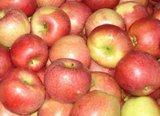 яблука краще синтетики