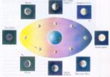 кругообіг місяця у природі