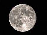 місячні сонати