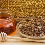Бджолина фармацевтика